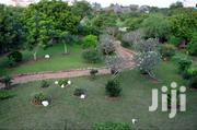 1/8 An Acre   Land & Plots For Sale for sale in Uasin Gishu, Ngenyilel