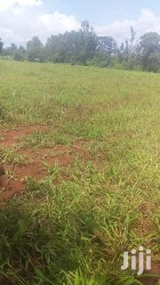 Prime One and Half Acre Parcel Near Kagio/Kutus Tarmac Kirinyaga. | Land & Plots For Sale for sale in Kirinyaga, Kangai