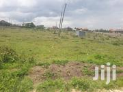 Kitengela Chuna 1/4 An Acre Plot | Land & Plots For Sale for sale in Kajiado, Kitengela
