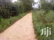 1/8 Acre Plot- Ngong | Land & Plots For Sale for sale in Kajiado, Ngong