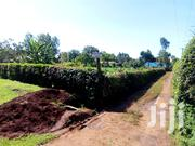 Plot At Gatitu Wambugu Farm Area 1/4 With Four Bedroom House | Land & Plots For Sale for sale in Nyeri, Ruring'U
