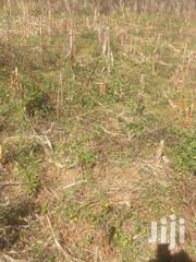 Agicultural Land For Sale 5 Hactares   Land & Plots For Sale for sale in Uasin Gishu, Soy