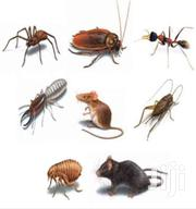 Standard Pest Control Services Kenya | Cleaning Services for sale in Nairobi, Karen