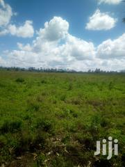 50*100 Plots for Sale in Sobea | Land & Plots For Sale for sale in Nakuru, Menengai West