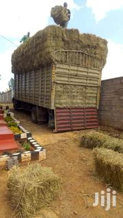 Raw Materials Hay Animal Feeds | Feeds, Supplements & Seeds for sale in Machakos, Kinanie