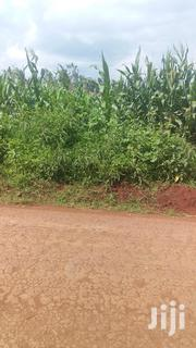 Half Acre Next to Kirinyaga University on a Quick Sale. | Land & Plots For Sale for sale in Kirinyaga, Kanyekini