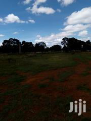 Land 5 Acres At Jasho Bodering Kabogo 5 Acres Good For School Title. | Land & Plots For Sale for sale in Uasin Gishu, Langas