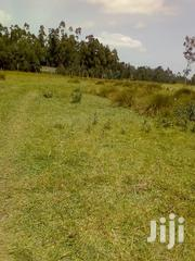 250 Acres Ol Kalou | Land & Plots For Sale for sale in Nyandarua, Karau