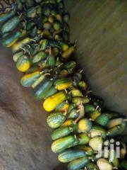 Selling Pumpkins   Feeds, Supplements & Seeds for sale in Homa Bay, Central Kasipul