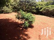 2 Acres of Land for Sale With an Old 5 Bedroom House in Muthaiga. | Land & Plots For Sale for sale in Nairobi, Nairobi Central
