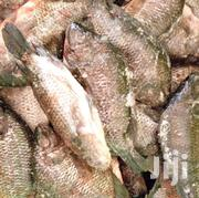 Gutted Tilapia Fish At An Affordable Rate. | Meals & Drinks for sale in Nairobi, Kawangware