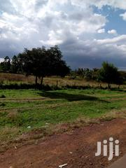 Land Touching Road Chemoset 5 Acres With House 3m Per Acre One Title | Land & Plots For Sale for sale in Uasin Gishu, Langas