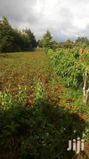 1⁄4 Acre Land | Land & Plots For Sale for sale in Nyandarua, Gatimu
