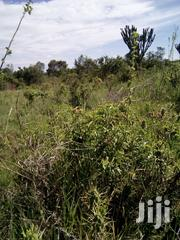 Tyrus Ventures | Land & Plots For Sale for sale in Nyeri, Gatarakwa