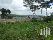 Prime 1⁄4 Acre Land on Sale in Ngong | Land & Plots For Sale for sale in Kajiado, Ngong