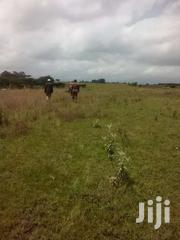10 Acres | Land & Plots For Sale for sale in Nakuru, Hells Gate