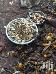 Local Mangoes Seeds Seller | Feeds, Supplements & Seeds for sale in Murang'a, Township G