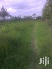 Land With Tittle Deed | Land & Plots For Sale for sale in Nyeri, Naromoru Kiamathaga