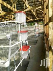 Layers Cages For Pullets In Nairobi | Farm Machinery & Equipment for sale in Nairobi, Kasarani