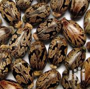 Hybrid Castor Seeds FV209 | Feeds, Supplements & Seeds for sale in Nairobi, Nairobi Central