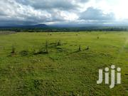 Shamba At Mweiga Isaco 2acres | Land & Plots For Sale for sale in Nyeri, Mweiga