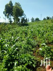 Two 100x100 Plots In Gathaithiu | Land & Plots For Sale for sale in Kiambu, Githunguri