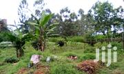 Kinungi Fly Over Nairobi Naivasha 2 Acres Land for Sale | Land & Plots For Sale for sale in Nakuru, Naivasha East