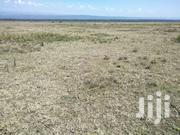 For Quick Sale Several 50/100 Plots In Mwariki C Few Kms From Highway | Land & Plots For Sale for sale in Busia, Bunyala West (Budalangi)