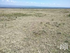 For Quick Sale Several 50/100 Plots In Mwariki C Few Kms From Highway