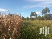 Agricultural Land In Chepyakwai Village In Uasin Gishu County For Sale | Land & Plots For Sale for sale in Uasin Gishu, Megun
