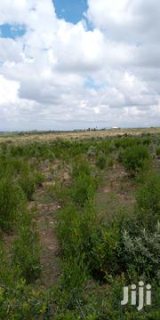 1.5 Acres Naivasha Mirera Land | Land & Plots For Sale for sale in Nakuru, Naivasha East