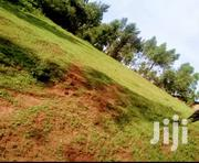 LAND NEAR KISII UNIVERSITY ON SALE | Land & Plots For Sale for sale in Kisii, Kisii Central