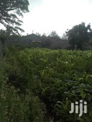 50 By 100 Prime Plot For Sale At Naivasha Kinamba Estate | Land & Plots For Sale for sale in Nakuru, Naivasha East