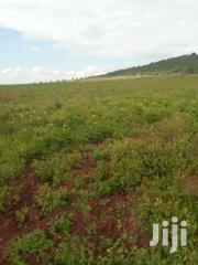 10 Acres In Siakago, Embu. | Land & Plots For Sale for sale in Embu, Gaturi North