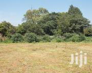 65 Acres for Sale at Chaka | Land & Plots For Sale for sale in Nyeri, Naromoru Kiamathaga