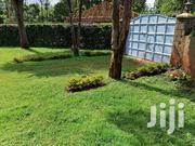Plots At Nyeri Town 1/8th Plots For Sale | Land & Plots For Sale for sale in Nyeri, Gatitu/Muruguru