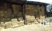 Wheat Straws For Sell   Feeds, Supplements & Seeds for sale in Uasin Gishu, Moiben