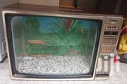 Old TV Made To Aquarium | Fish for sale in Nairobi, Karen