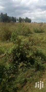 Land 5 Acre In Kipsangui   Land & Plots For Sale for sale in Uasin Gishu, Soy