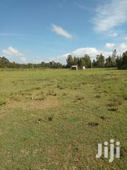 50 Acres In Nairutia, Laikipia. | Land & Plots For Sale for sale in Nyeri, Mugunda