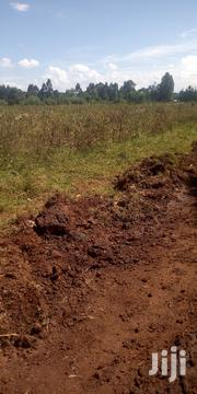 Land In Kitale 5 Acres In Saboti With Ready Title Deed | Land & Plots For Sale for sale in Trans-Nzoia, Saboti