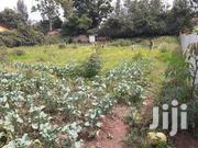 Plot For Sale | Land & Plots For Sale for sale in Kiambu, Murera