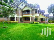 5 Bedroom House To Let In Muthaiga.   Houses & Apartments For Rent for sale in Nairobi, Nairobi Central