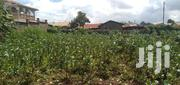 1/4 Acre Plot for Sale in Limuru/Mutarakwa | Land & Plots For Sale for sale in Kiambu, Limuru Central