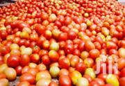 Tomatoes Grade 1 - Fresh And Healthy ( Price Per 100kg Crate) | Meals & Drinks for sale in Nairobi, Nairobi Central