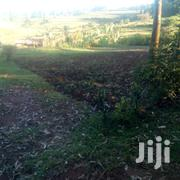 Ready Title | Land & Plots For Sale for sale in Kakamega, Butsotso East