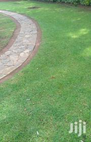 Landscaping Services | Landscaping & Gardening Services for sale in Nairobi, Karura