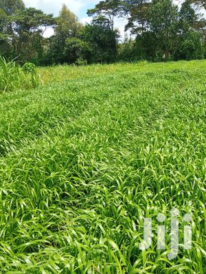 One Acre Agricultural Land. It Is in Munyu Area, Kieni East.