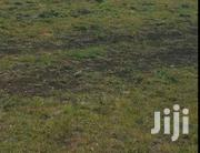 Plot For Sale Size 40 By 80 Located At Juja | Land & Plots For Sale for sale in Kiambu, Juja