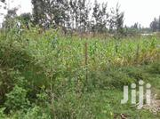 Prime Plot for Sale | Land & Plots For Sale for sale in Kisii, Kisii Central